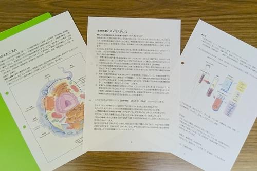 目からウロコの解剖学栄養学セミナーセラピスト