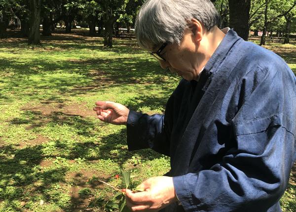 桜は同種のクローン同士で受粉しても実がならないと教えて頂きました。